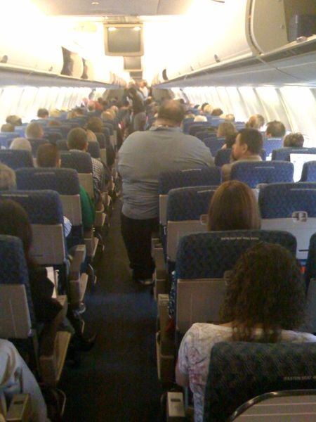 American airline obese guy