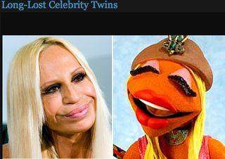 Donatella versace muppett